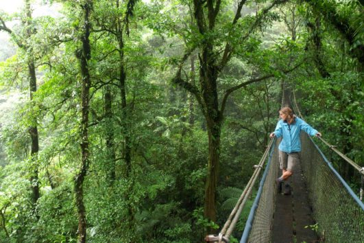 natural_mystic_travel_hanging_bridges_monteverde
