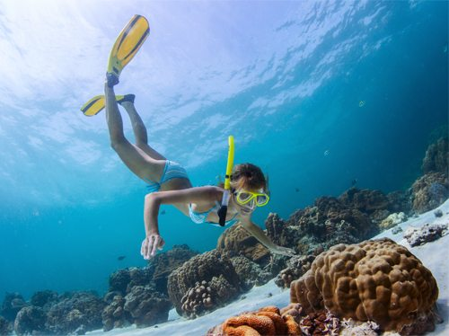 Natural)Mystic_Travel_Snorkel