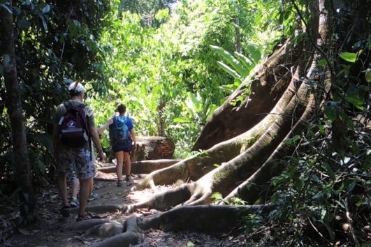 natural-mystic-travel-corcovado-hike